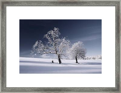 Duo White Framed Print by Philippe Sainte-Laudy