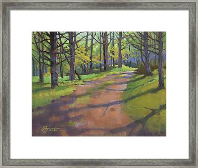Dupuy Drive Framed Print by Todd Baxter
