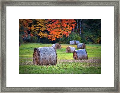 Durham Autumn Harvest Framed Print by Eric Gendron