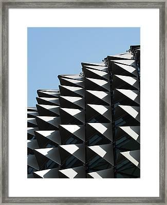 Durian Framed Print