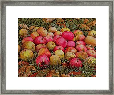 Durnitzhofer Apples Framed Print