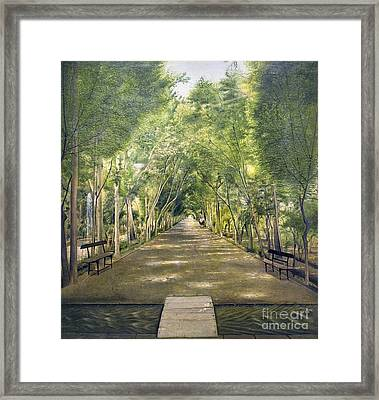 Dushan Tappe One Of Tehran's Suburbs Framed Print by Celestial Images