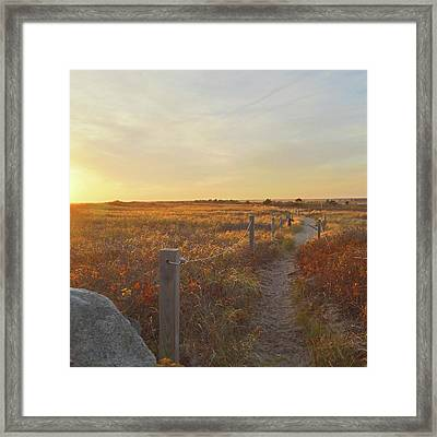 Dusk At South Cape Beach Framed Print by Brooke T Ryan