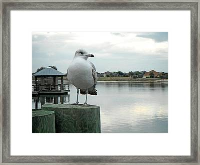 Framed Print featuring the painting Dusk At The Pier by Martha Ayotte