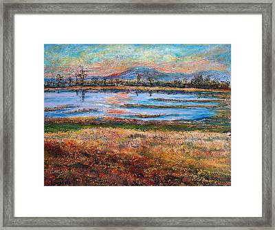 Dusk At Wildlife Refuge Framed Print by Sandra Longmore