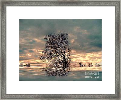 Framed Print featuring the photograph Dusk by Elfriede Fulda