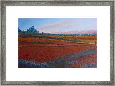 Dusk Falls On The Pumice Field Framed Print by Jenny Armitage