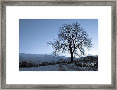 Dusk In Scottish Highlands Framed Print by David Bleeker