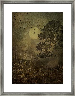 Dusk Framed Print by Jeff Burgess