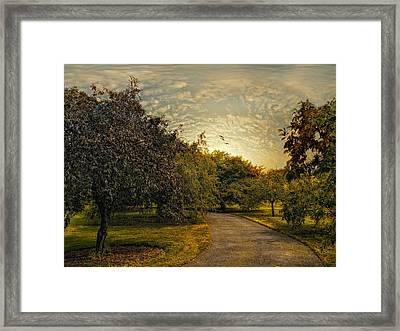 Dusk Framed Print by Jessica Jenney