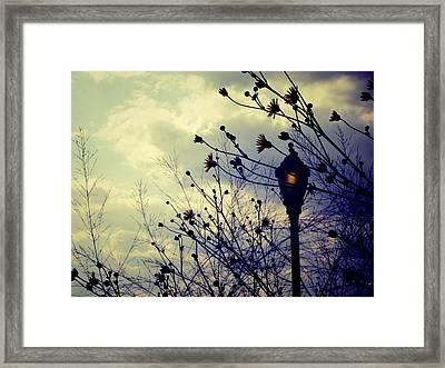 Dusk Framed Print by Jhoy E Meade