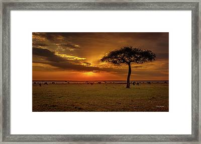 Dusk Over  The Serengeti Framed Print