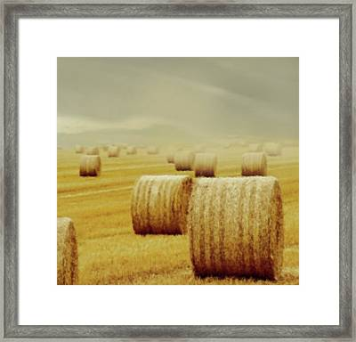 Dust Storm Framed Print by Georgiana Romanovna