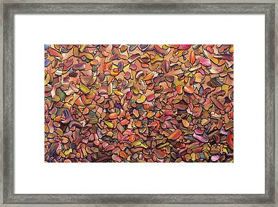 Duststorm Framed Print by James W Johnson