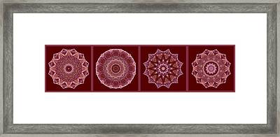 Dusty Rose Mandala Fractal Panel Framed Print