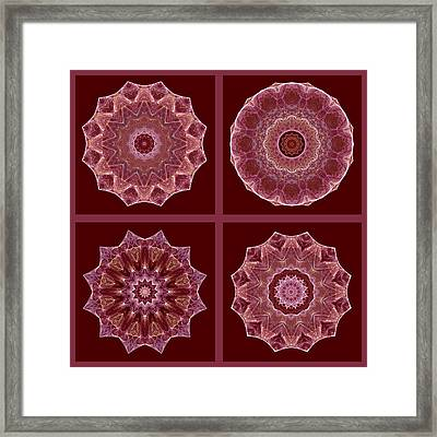 Dusty Rose Mandala Fractal Set Framed Print