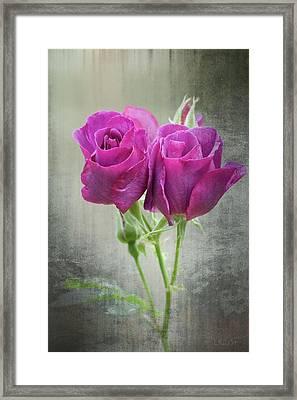 Dusty Roses Framed Print