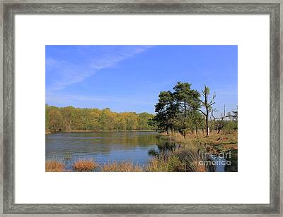 Dutch Countryside With Lakes, Trees, Meadows Framed Print