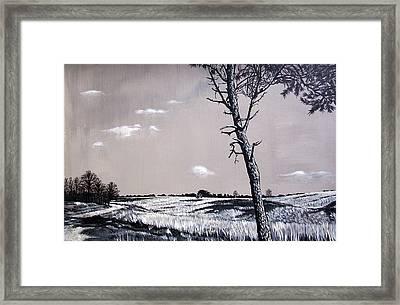 Dutch Heathland Framed Print by Arie Van der Wijst