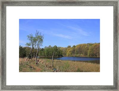 Dutch Landscape With Lakes, Meadows And Trees Framed Print