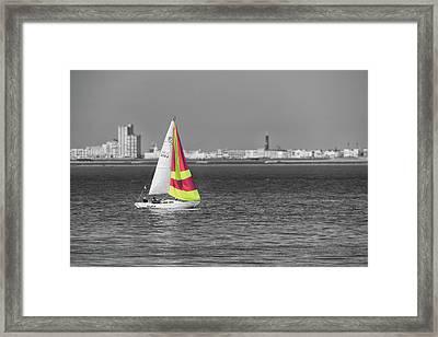 Alka Framed Print by Wim Lanclus