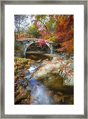 Dying Colours Framed Print