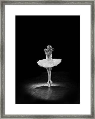 Dying Swan 5 Alternative Size Framed Print