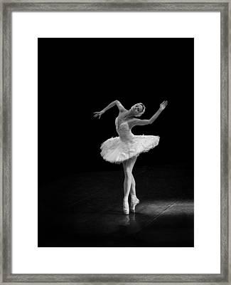 Dying Swan 7 Alternate Size Framed Print