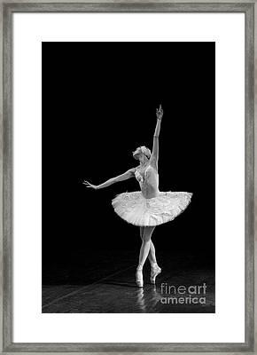 Dying Swan 9 Alternative Size Framed Print
