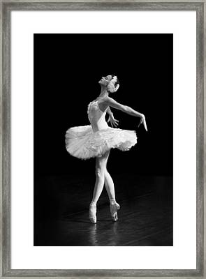 Dying Swan I Alternative Size Framed Print