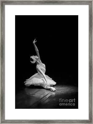 Dying Swan II Alternative Size Framed Print