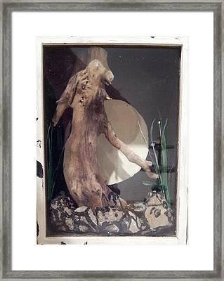 Dying Tree 2 Framed Print