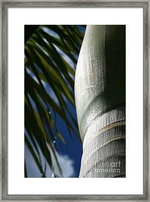 E Hawaii Aloha E Framed Print by Sharon Mau