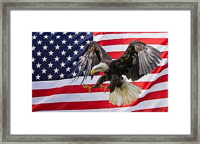Eagle And Flag Framed Print by Scott Carruthers