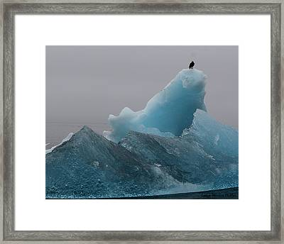 Eagle And Iceberg 82 Framed Print