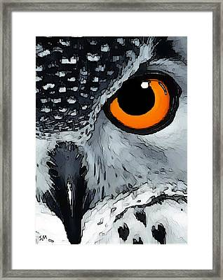 Eagle Art Framed Print
