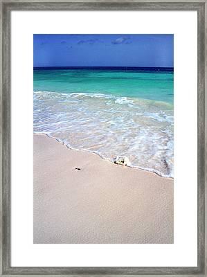 Eagle Beach Framed Print by Thomas R Fletcher