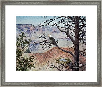 Eagle Canyon Framed Print by DParins Zich