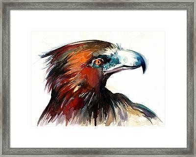 Eagle Head Detail Xxl Framed Print by Tiberiu Soos