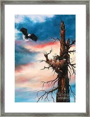 Eagle Family Framed Print by Jean Harrison