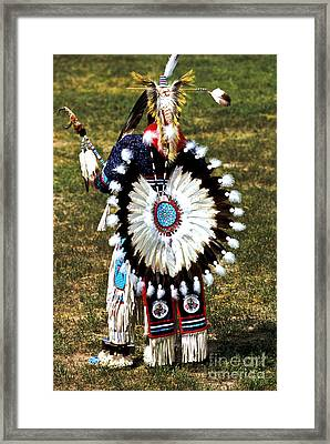 Eagle Feathers Framed Print