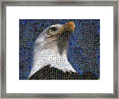 Eagle Framed Print by Gilberto Viciedo