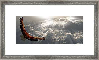 Eagle In Flight Above The Clouds Framed Print