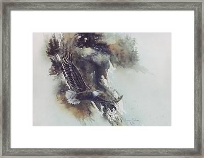 Eagle In Flight Framed Print by Lynne Parker