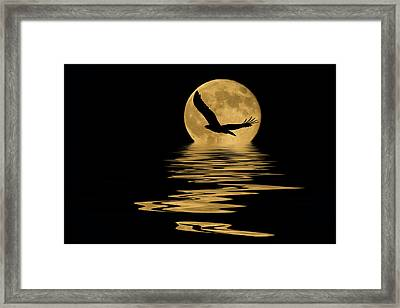 Eagle In The Moonlight Framed Print by Shane Bechler