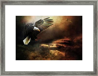 Eagle Is Landing Framed Print