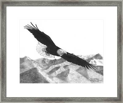 Eagle Framed Print by James M Thomas