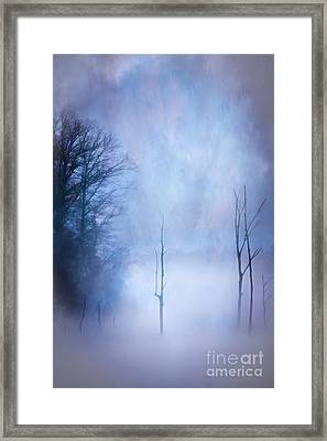 Eagle Lake 1 Framed Print by Larry McMahon