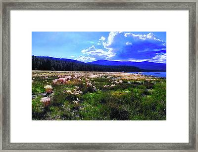 Eagle Lake Afternoon Framed Print