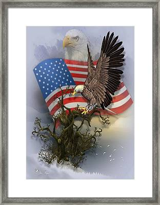 Eagle Lands Framed Print